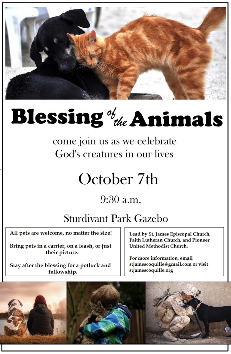 blessing-of-the-animals2-768x1174